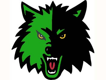 Image result for loomis wolves
